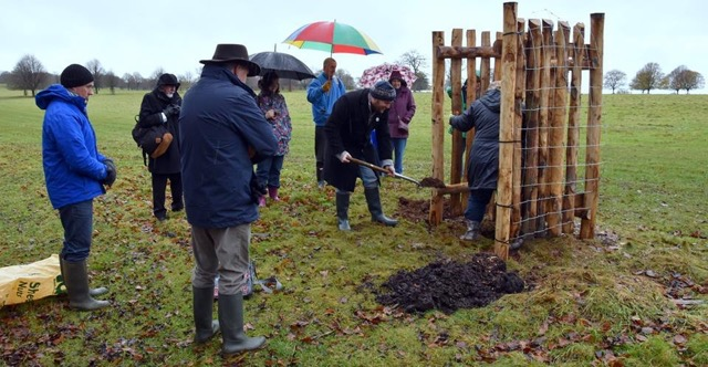 Tree planting at Dyrham Park, 'A Legacy for our Grandchildren.'